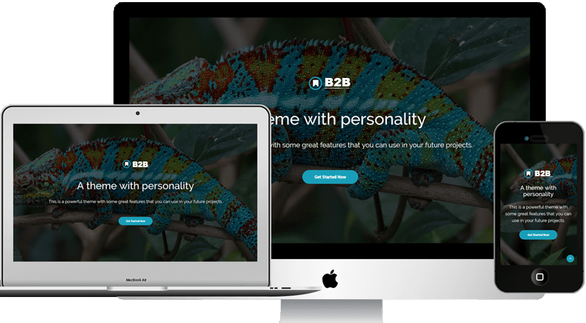 WebleadsB2B - A perfect theme